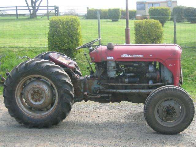 Tractor Restoration Projects : Mf vineyard