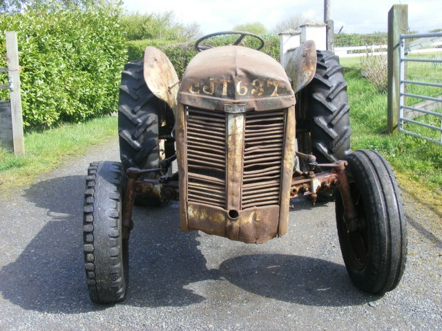 Tractor Restoration Projects : Mf tef